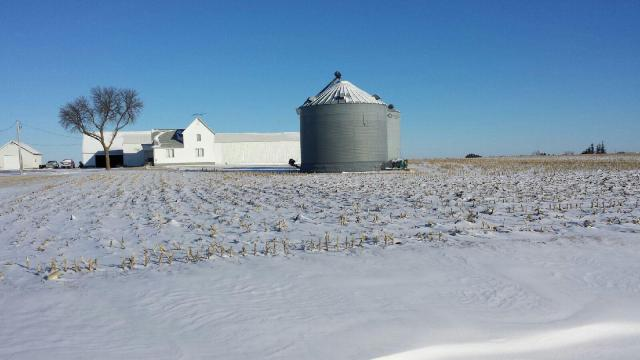 Winter on the Farm.